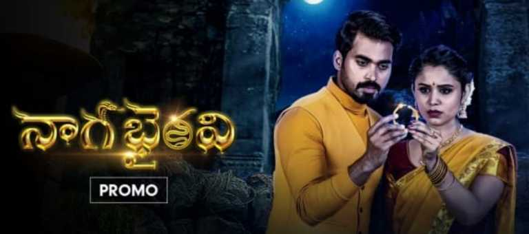 Naga Bhairavi 21st November 2020 Written Episode Update: Twist