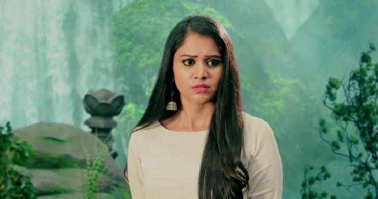 Naga Bhairavi 23rd November 2020 Written Episode Update: Twist
