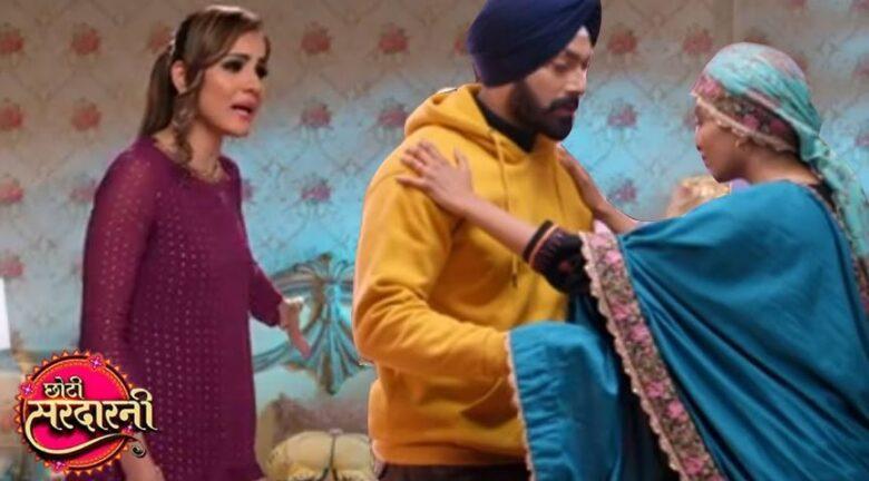 Written Episode Choti Sardarni 23rd February 2021