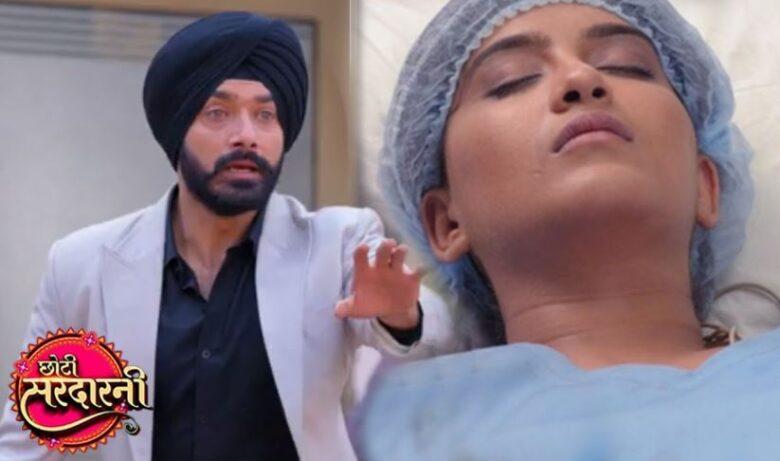 Written Episode Choti Sardarni 20th April 2021