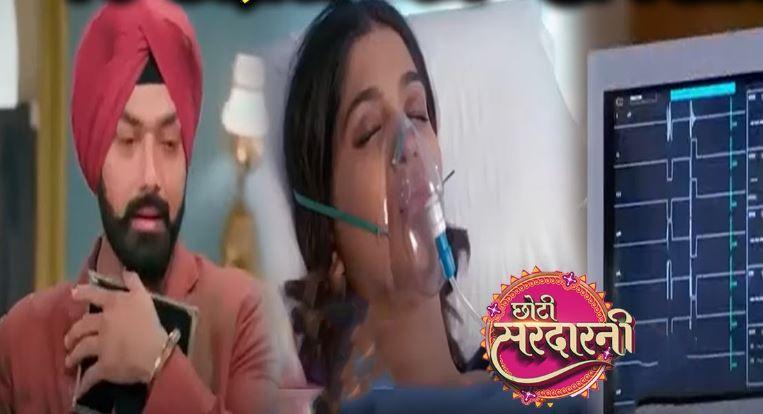 Written Episode Choti Sardarni 24th April 2021